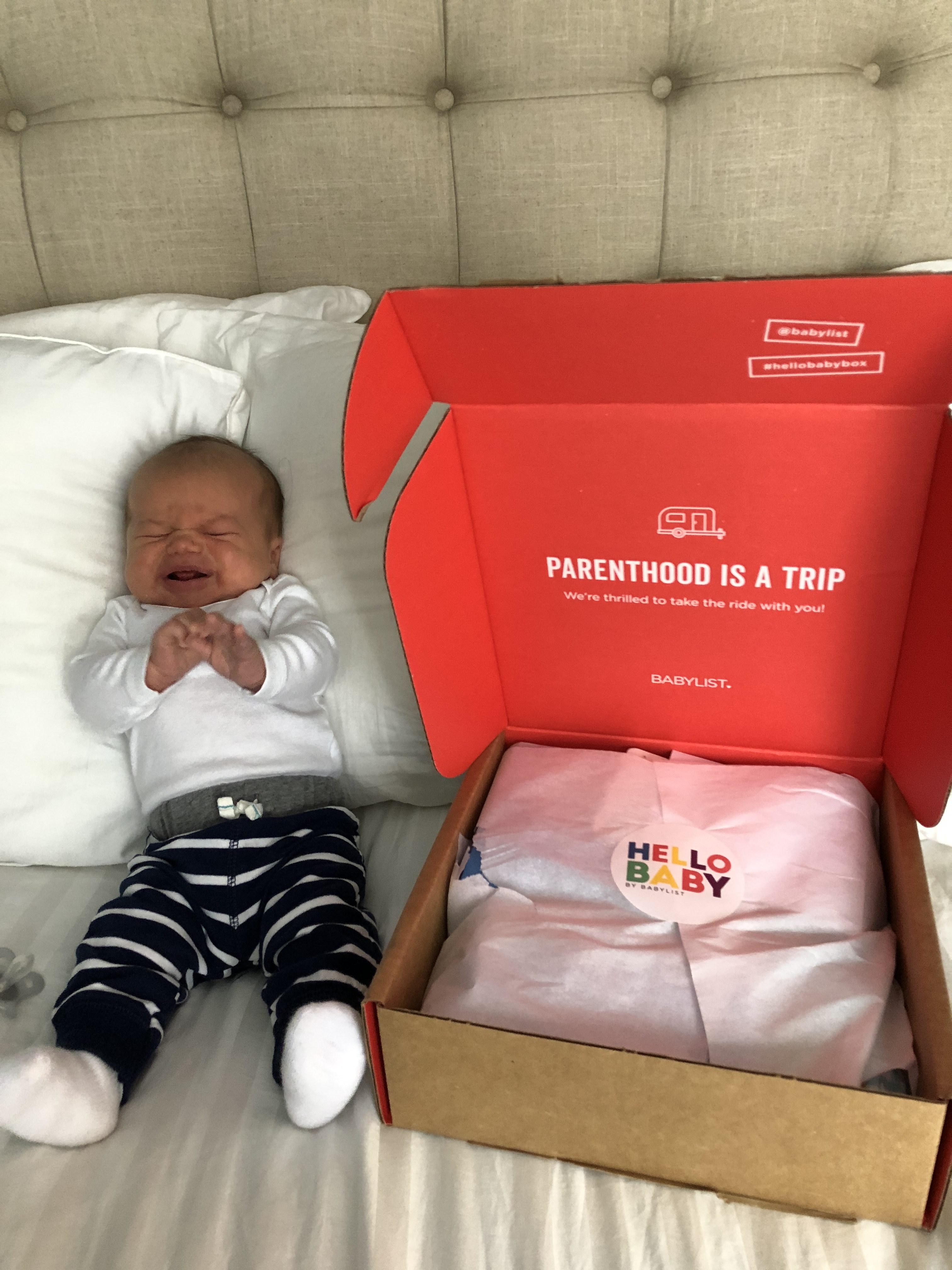 Babylist Registry And Hello Baby Box Simply Old Fashioned